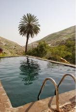 בריכת התמר בנחל פרת - נאות מדבר בישראל שחייבים להכיר