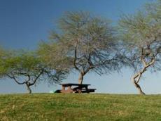 חניון קראוונים פארק לאומי אשכול
