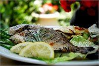 מסעדת הדגים עין גב - חוויה טעימה עם תפריט חדש ונוף ישן ואהוב