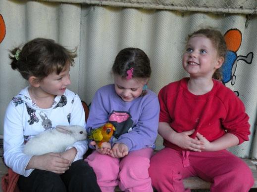 גן וחיות - אטרקציה לילדים בכנרת