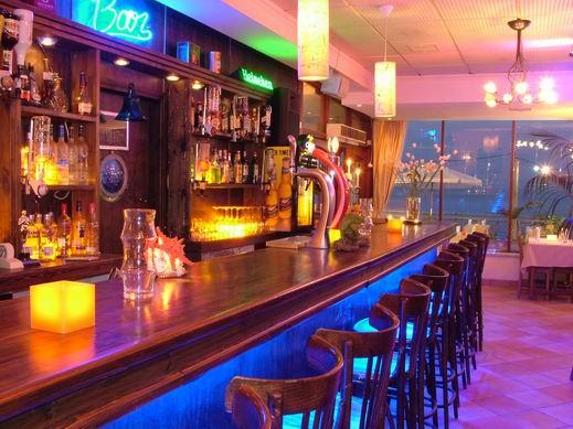 גלי גיל - sea bar