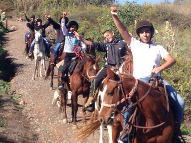 טיולי סוסים וקמפינג בחווה הצ'רקסית