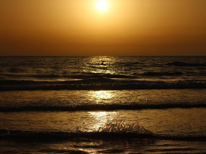 חוף ביאנקיני