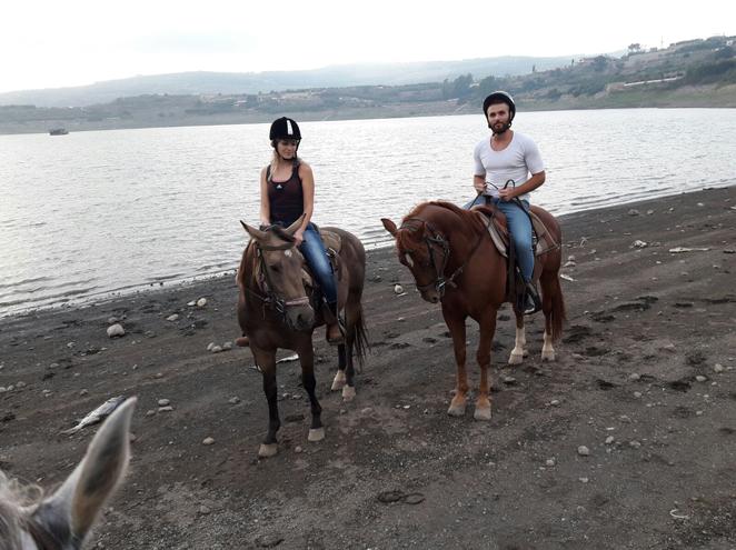 חוות רם - טיולי סוסים