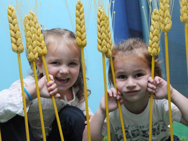בעקבות הפרפרים - מוזיאון הילדים הישראלי בחולון