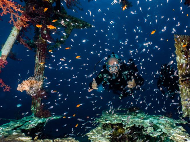 אחלה דייב - מועדון צלילה באילת