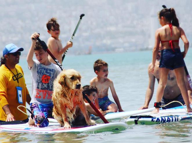פיק אפ סרף - Pick Up Surf