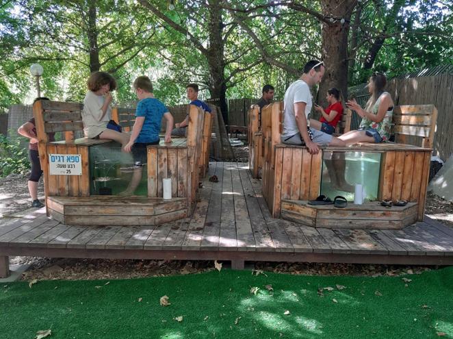 פארק משפחות בדג על הדן-כל החוויות במקום אחד