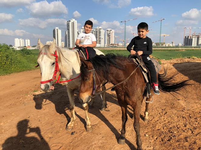טיולי סוסים חוות גן עדן
