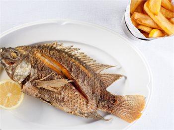מסעדת הדגים עין גב