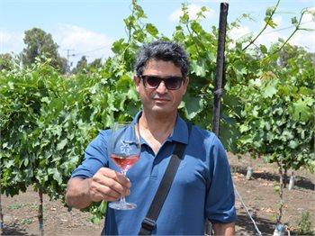 בשבילי היין רוני אוחיון