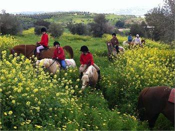 גן הסוסים ירכא