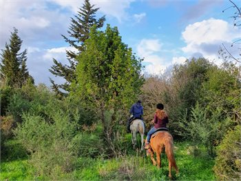 חוות מונפורטויטו - טיולי סוסים
