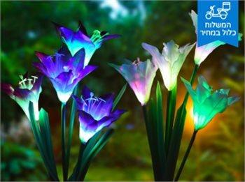 תאורה סולארית 4 פרחי לילי