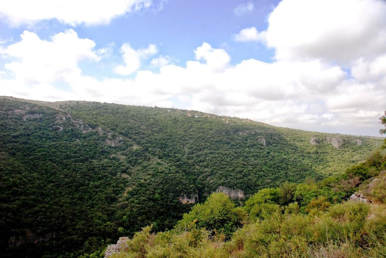חניון הזיתים - פיקניק עם תצפית עוצרת נשימה