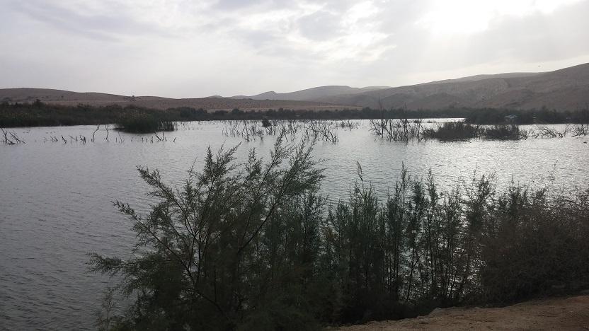 אגם ירוחם - פלא טבעי בלב המדבר