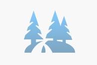 שמורת יער אלונים – אלוני אבא
