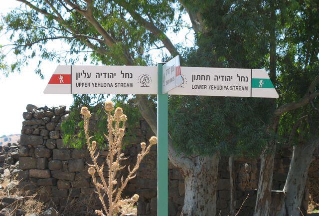 נחל יהודיה